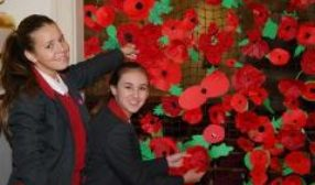 New Hall Remembrance Close Up